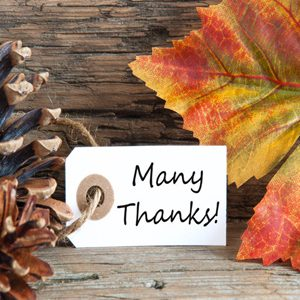 Mapcom Systems is Thankful
